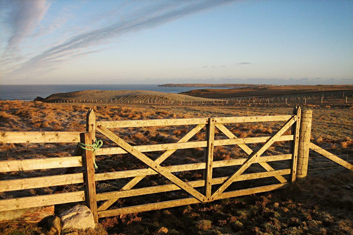 Gaelic focus for Urras Oighreachd Ghabhsainn (Galson Estate Trust)